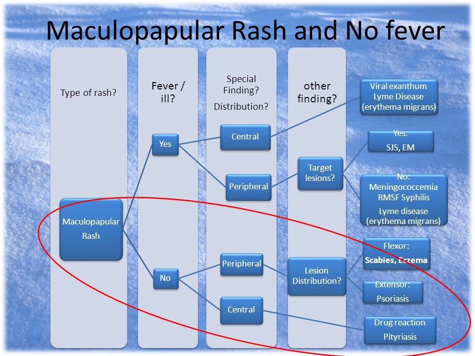 Maculopapular Rash and No fever other finding? Special Finding? Distribution? Fever / ill? Type of rash? Maculopapular Rash Yes Central Viral exanthum