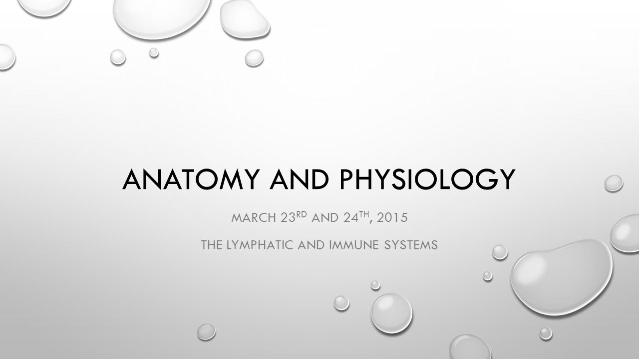 ANATOMY AND PHYSIOLOGY MARCH 23 RD AND 24 TH, 2015 THE LYMPHATIC AND IMMUNE SYSTEMS