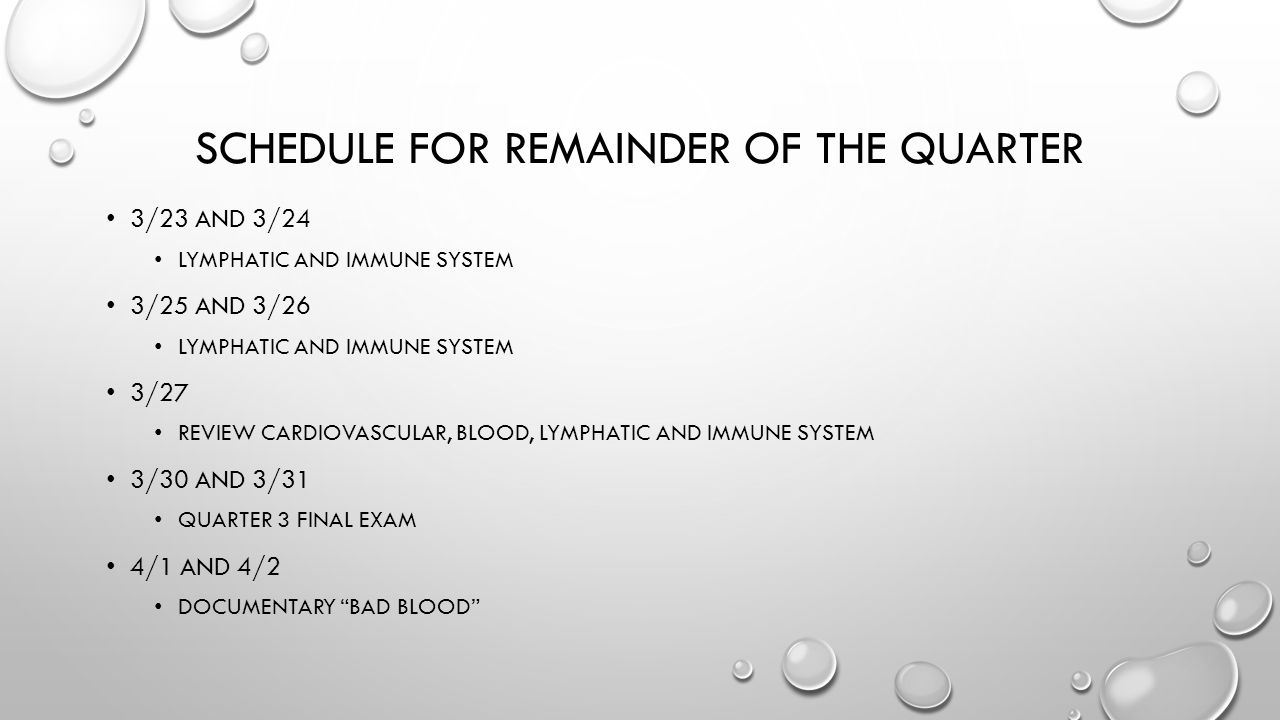 SCHEDULE FOR REMAINDER OF THE QUARTER 3/23 AND 3/24 LYMPHATIC AND IMMUNE SYSTEM 3/25 AND 3/26 LYMPHATIC AND IMMUNE SYSTEM 3/27 REVIEW CARDIOVASCULAR,