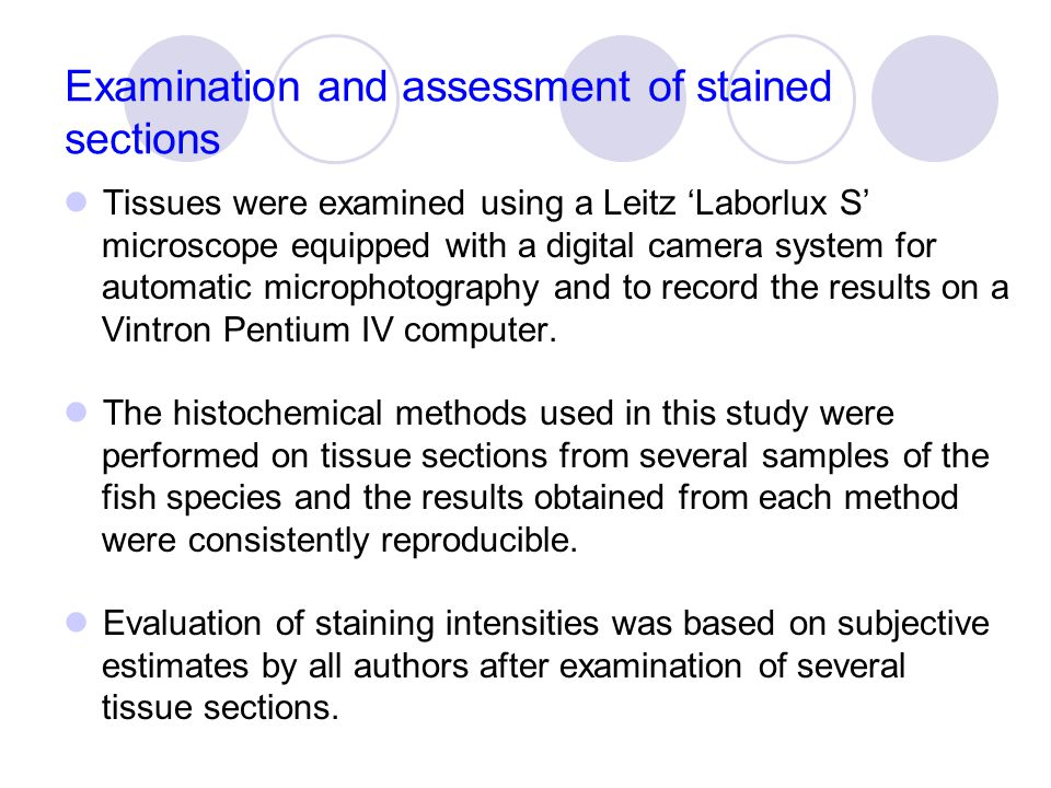 Examination and assessment of stained sections Tissues were examined using a Leitz 'Laborlux S' microscope equipped with a digital camera system for automatic microphotography and to record the results on a Vintron Pentium IV computer.
