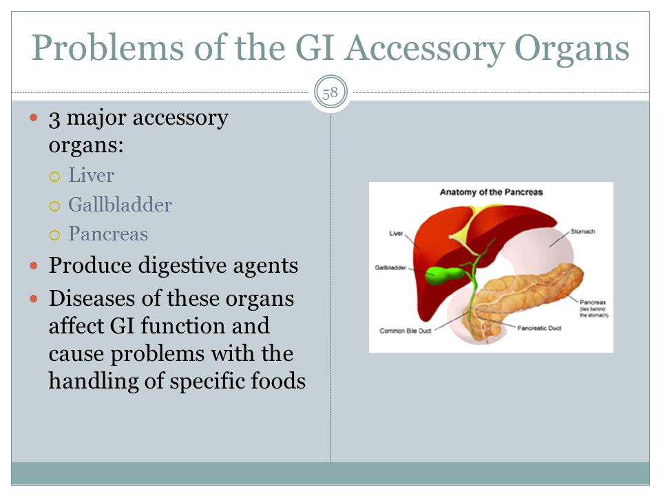 Problems of the GI Accessory Organs 58 3 major accessory organs:  Liver  Gallbladder  Pancreas Produce digestive agents Diseases of these organs af