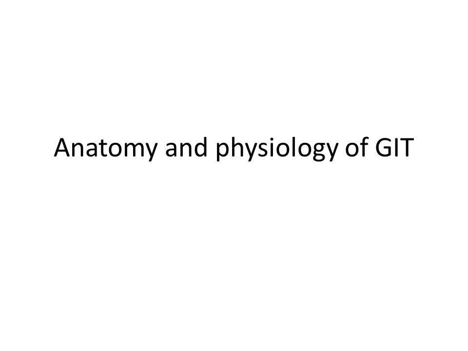 Anatomy and physiology of GIT