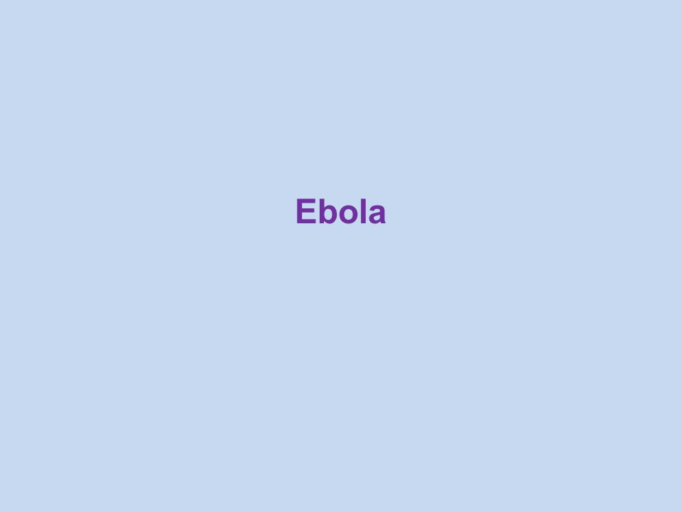 Ebola is A severe, often fatal disease in humans and animals (such as monkeys, gorillas, and chimpanzees) Caused by the Ebola virus Highly infectious, but can be prevented What is Ebola?