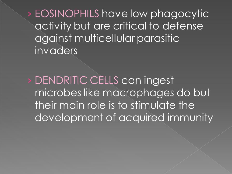 › EOSINOPHILS have low phagocytic activity but are critical to defense against multicellular parasitic invaders › DENDRITIC CELLS can ingest microbes like macrophages do but their main role is to stimulate the development of acquired immunity