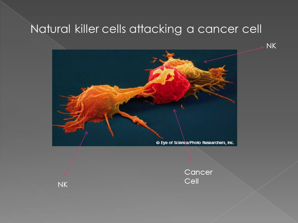 Natural killer cells attacking a cancer cell NK Cancer Cell NK