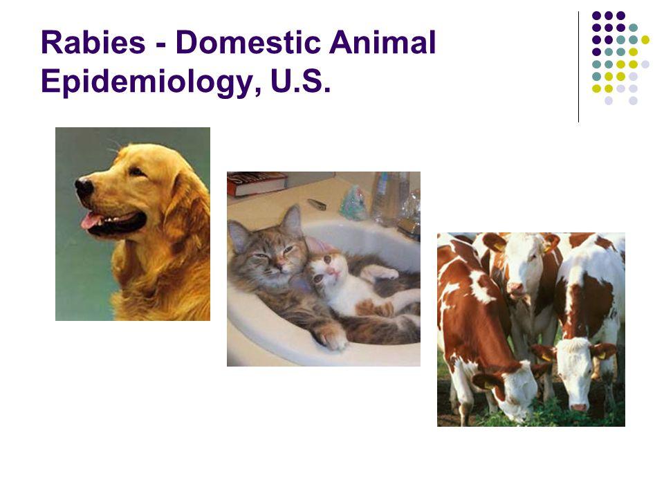 Rabies - Domestic Animal Epidemiology, U.S.