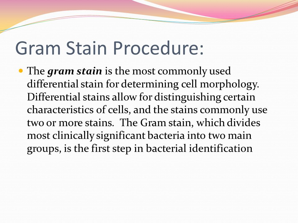 Gram Stain Procedure: The gram stain is the most commonly used differential stain for determining cell morphology. Differential stains allow for disti