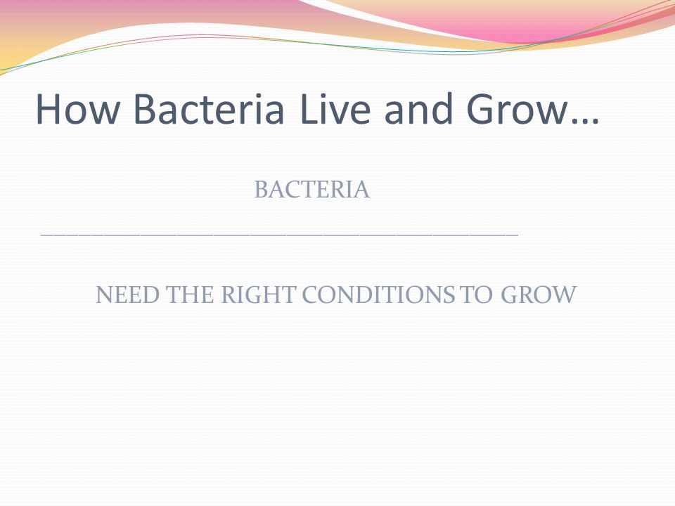 How Bacteria Live and Grow… BACTERIA _______________________________________ NEED THE RIGHT CONDITIONS TO GROW