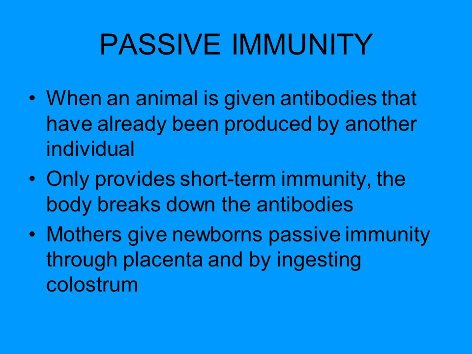 PASSIVE IMMUNITY When an animal is given antibodies that have already been produced by another individual Only provides short-term immunity, the body breaks down the antibodies Mothers give newborns passive immunity through placenta and by ingesting colostrum