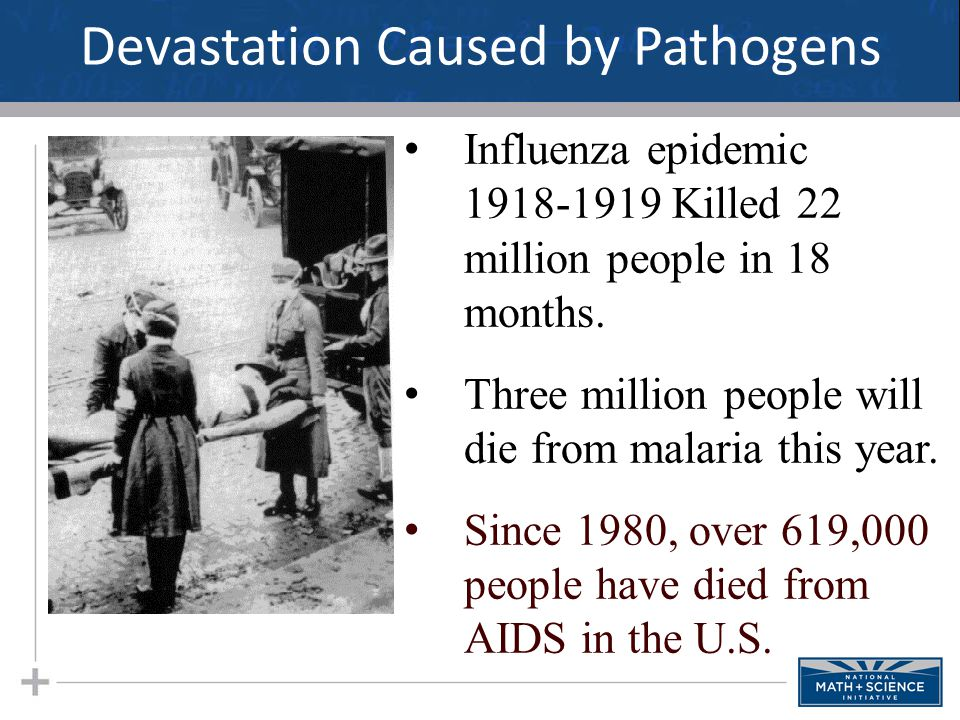 Devastation Caused by Pathogens Influenza epidemic 1918-1919 Killed 22 million people in 18 months. Three million people will die from malaria this ye
