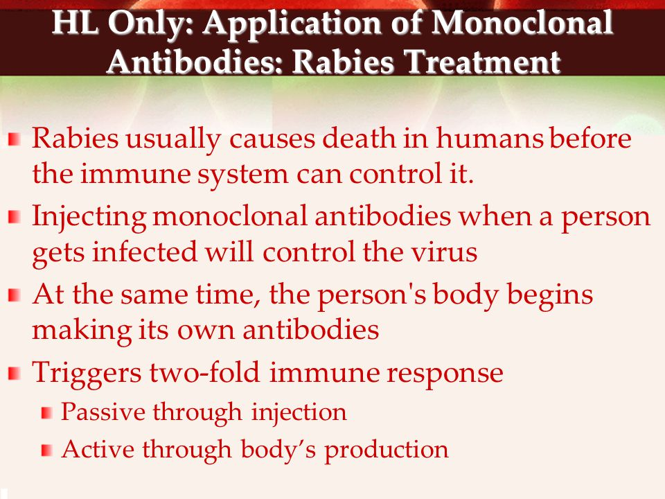 HL Only: Application of Monoclonal Antibodies: Rabies Treatment Rabies usually causes death in humans before the immune system can control it. Injecti
