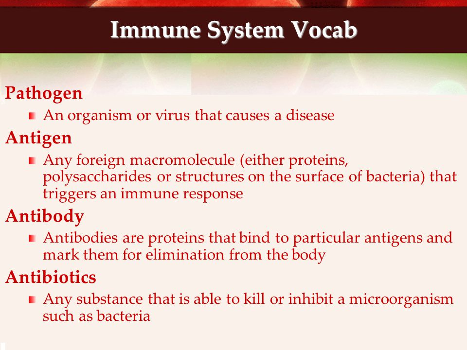 Passive versus Active Immunity Passive immunity is due to the acquisition of antibodies from another source Such as when a developing fetus acquires antibodies from its mother when they are artificially injected into a person Active immunity is when antibodies are produced by the person themselves after his or her immune system is triggered by antigens