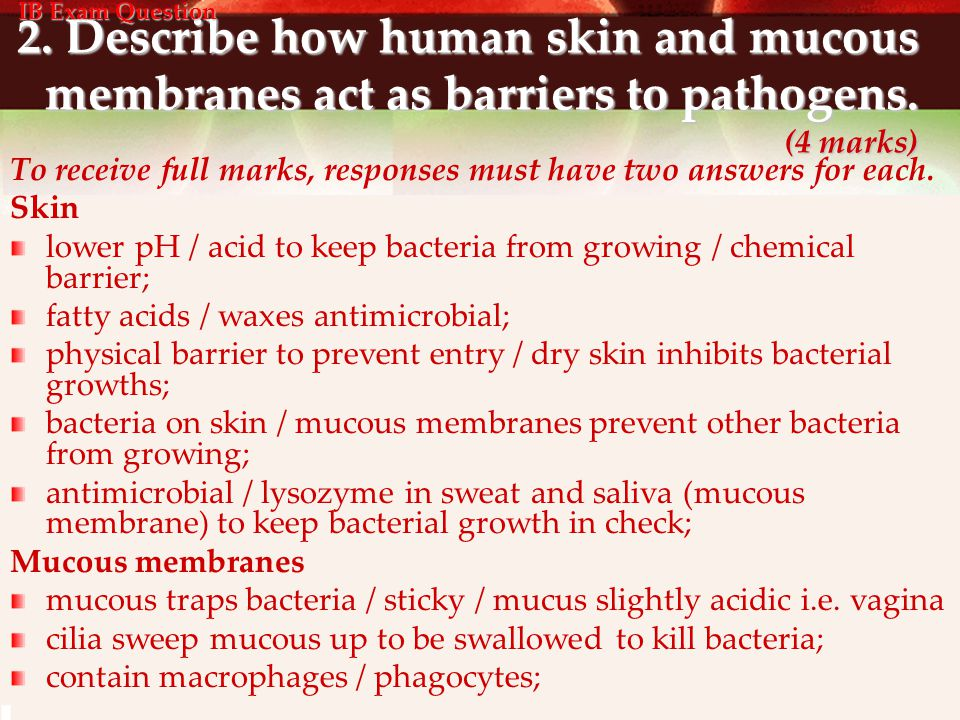 2. Describe how human skin and mucous membranes act as barriers to pathogens. (4 marks) To receive full marks, responses must have two answers for eac