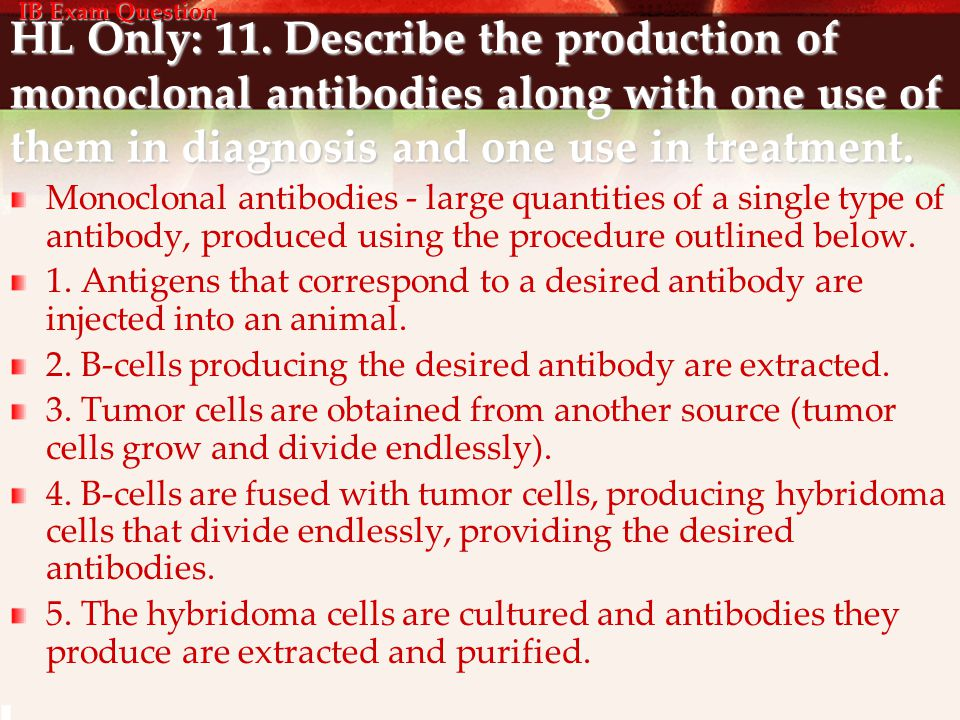 HL Only: 11. Describe the production of monoclonal antibodies along with one use of them in diagnosis and one use in treatment. Monoclonal antibodies