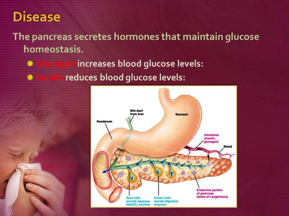 Disease The pancreas secretes hormones that maintain glucose homeostasis.