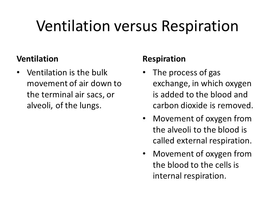 Ventilation versus Respiration Ventilation Ventilation is the bulk movement of air down to the terminal air sacs, or alveoli, of the lungs. Respiratio