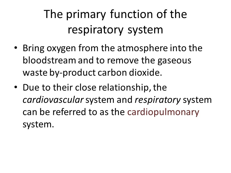 The primary function of the respiratory system Bring oxygen from the atmosphere into the bloodstream and to remove the gaseous waste by-product carbon