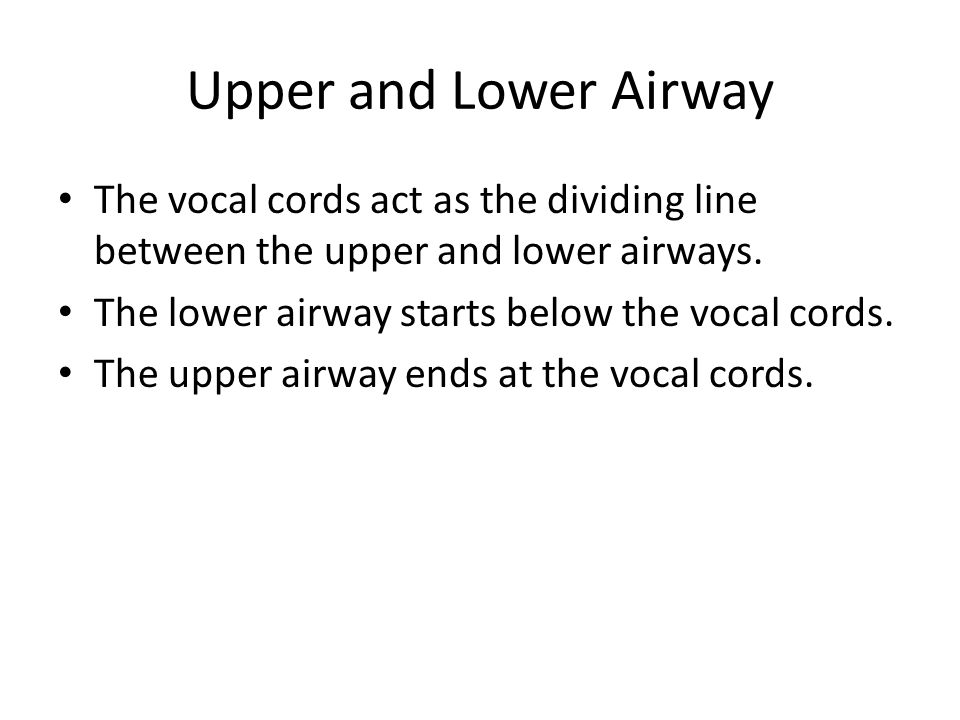 Upper and Lower Airway The vocal cords act as the dividing line between the upper and lower airways. The lower airway starts below the vocal cords. Th