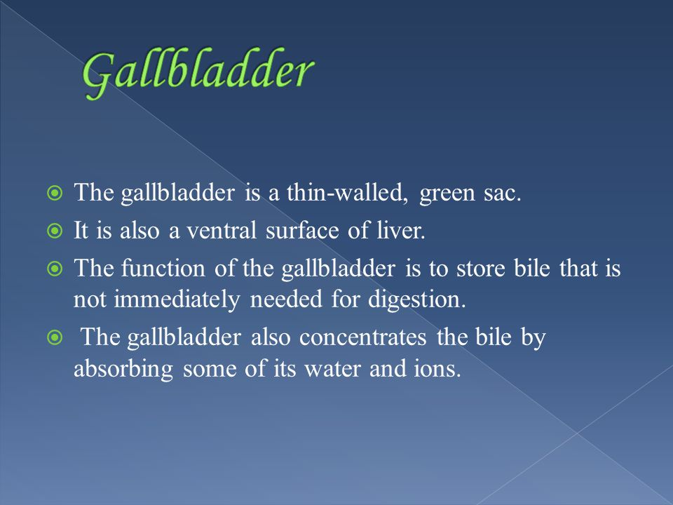  The gallbladder is a thin-walled, green sac.  It is also a ventral surface of liver.