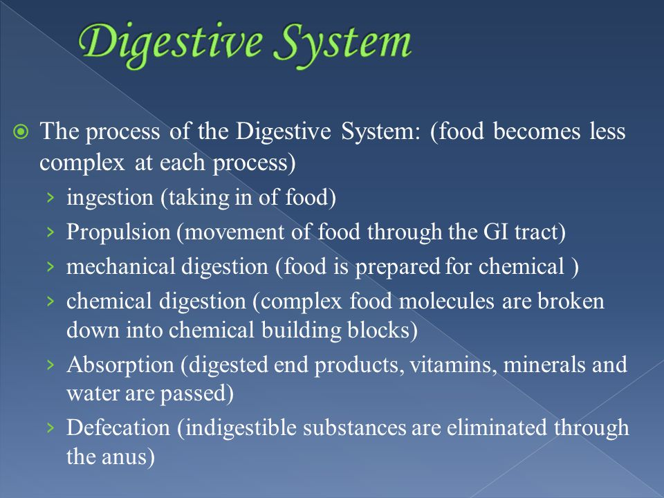  The process of the Digestive System: (food becomes less complex at each process) › ingestion (taking in of food) › Propulsion (movement of food through the GI tract) › mechanical digestion (food is prepared for chemical ) › chemical digestion (complex food molecules are broken down into chemical building blocks) › Absorption (digested end products, vitamins, minerals and water are passed) › Defecation (indigestible substances are eliminated through the anus)