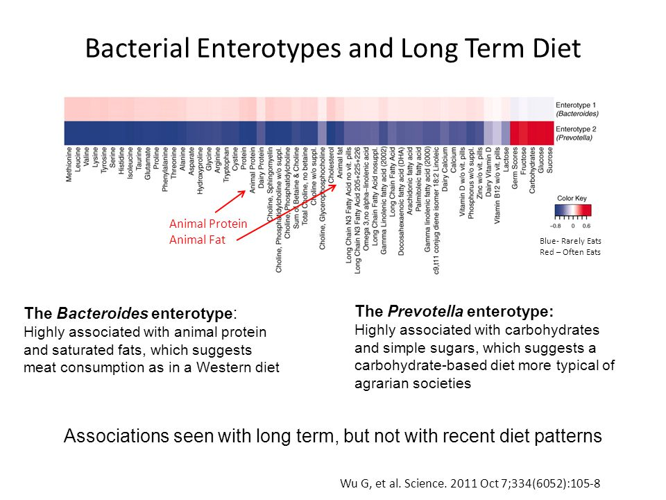 Bacterial Enterotypes and Long Term Diet Animal Protein Animal Fat Blue- Rarely Eats Red – Often Eats Wu G, et al.