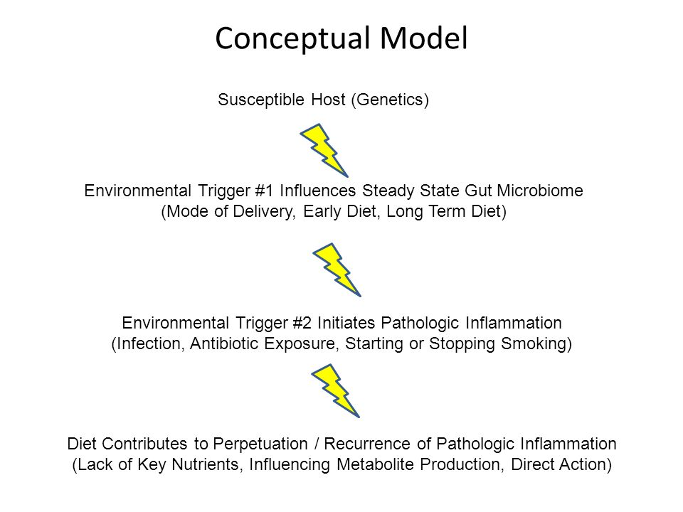 Conceptual Model Susceptible Host (Genetics) Environmental Trigger #1 Influences Steady State Gut Microbiome (Mode of Delivery, Early Diet, Long Term Diet) Environmental Trigger #2 Initiates Pathologic Inflammation (Infection, Antibiotic Exposure, Starting or Stopping Smoking) Diet Contributes to Perpetuation / Recurrence of Pathologic Inflammation (Lack of Key Nutrients, Influencing Metabolite Production, Direct Action)