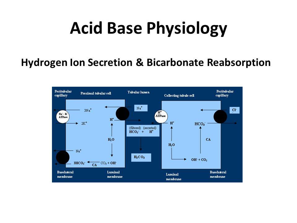 Acid Base Physiology Hydrogen Ion Secretion & Bicarbonate Reabsorption