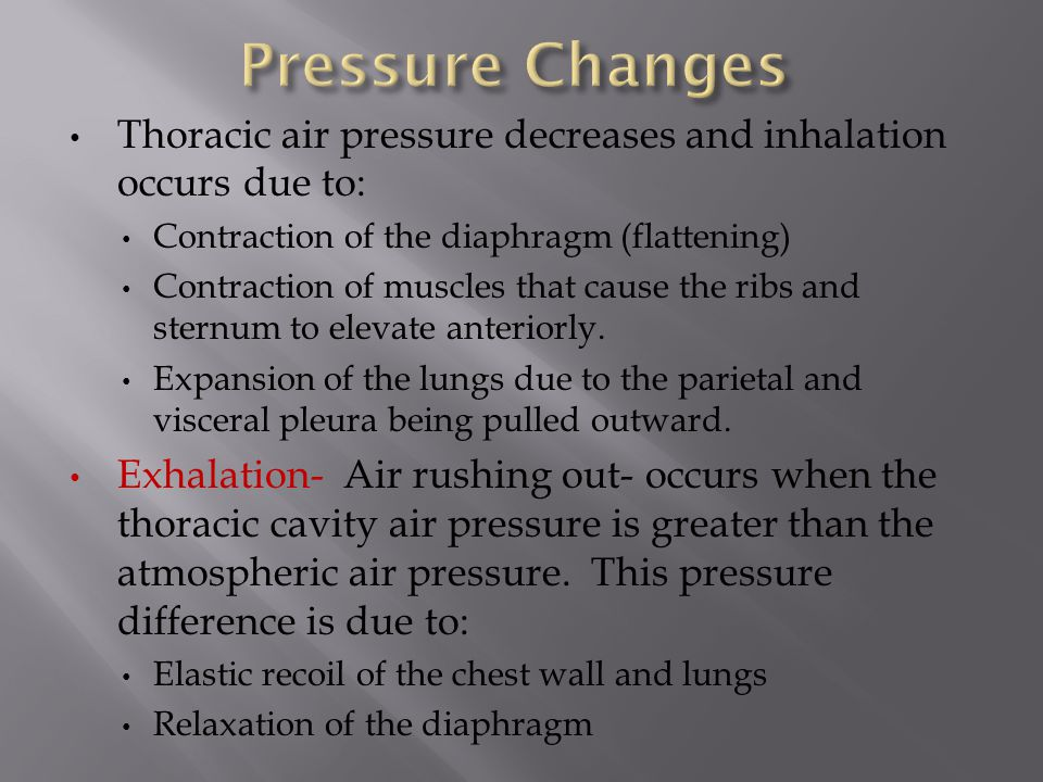 Thoracic air pressure decreases and inhalation occurs due to: Contraction of the diaphragm (flattening) Contraction of muscles that cause the ribs and sternum to elevate anteriorly.