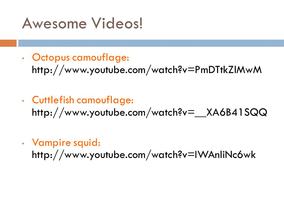 Awesome Videos! Octopus camouflage: http://www.youtube.com/watch?v=PmDTtkZlMwM Cuttlefish camouflage: http://www.youtube.com/watch?v=__XA6B41SQQ Vampi