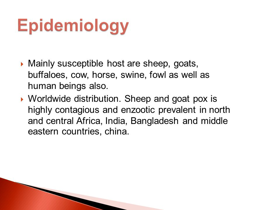  Mainly susceptible host are sheep, goats, buffaloes, cow, horse, swine, fowl as well as human beings also.  Worldwide distribution. Sheep and goat