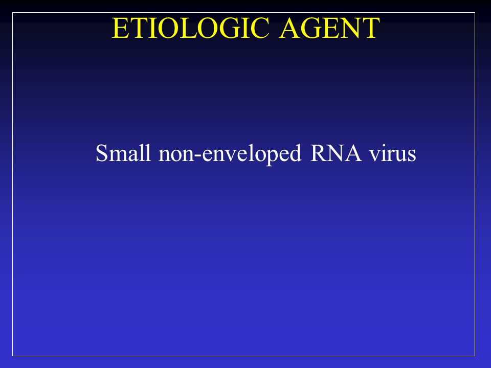 ETIOLOGIC AGENT Small non-enveloped RNA virus