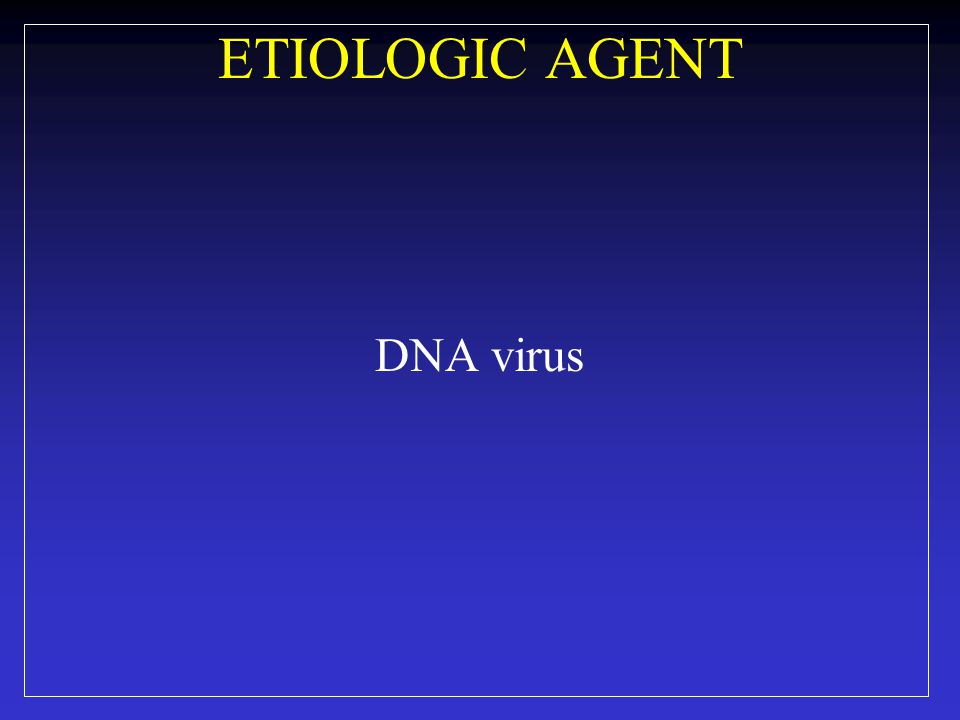 ETIOLOGIC AGENT DNA virus