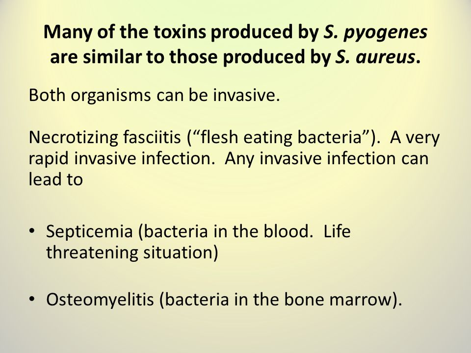 Many of the toxins produced by S.pyogenes are similar to those produced by S.