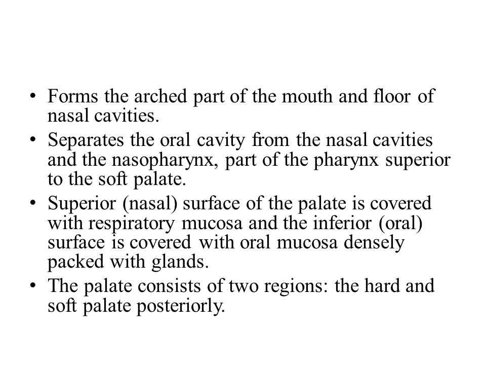 Forms the arched part of the mouth and floor of nasal cavities. Separates the oral cavity from the nasal cavities and the nasopharynx, part of the pha
