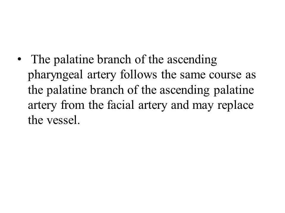 The palatine branch of the ascending pharyngeal artery follows the same course as the palatine branch of the ascending palatine artery from the facial