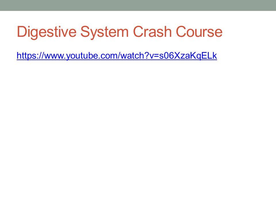 Digestive System Crash Course https://www.youtube.com/watch?v=s06XzaKqELk