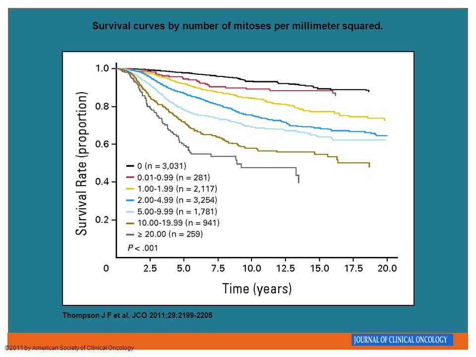 Survival curves by number of mitoses per millimeter squared. Thompson J F et al. JCO 2011;29:2199-2205 ©2011 by American Society of Clinical Oncology