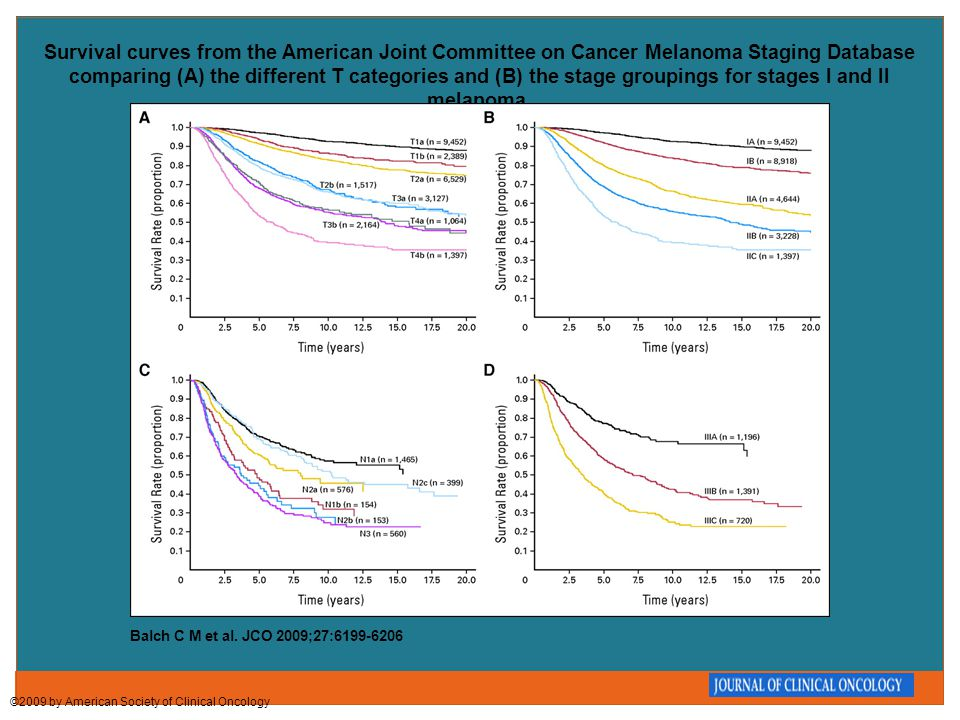 Survival curves from the American Joint Committee on Cancer Melanoma Staging Database comparing (A) the different T categories and (B) the stage group