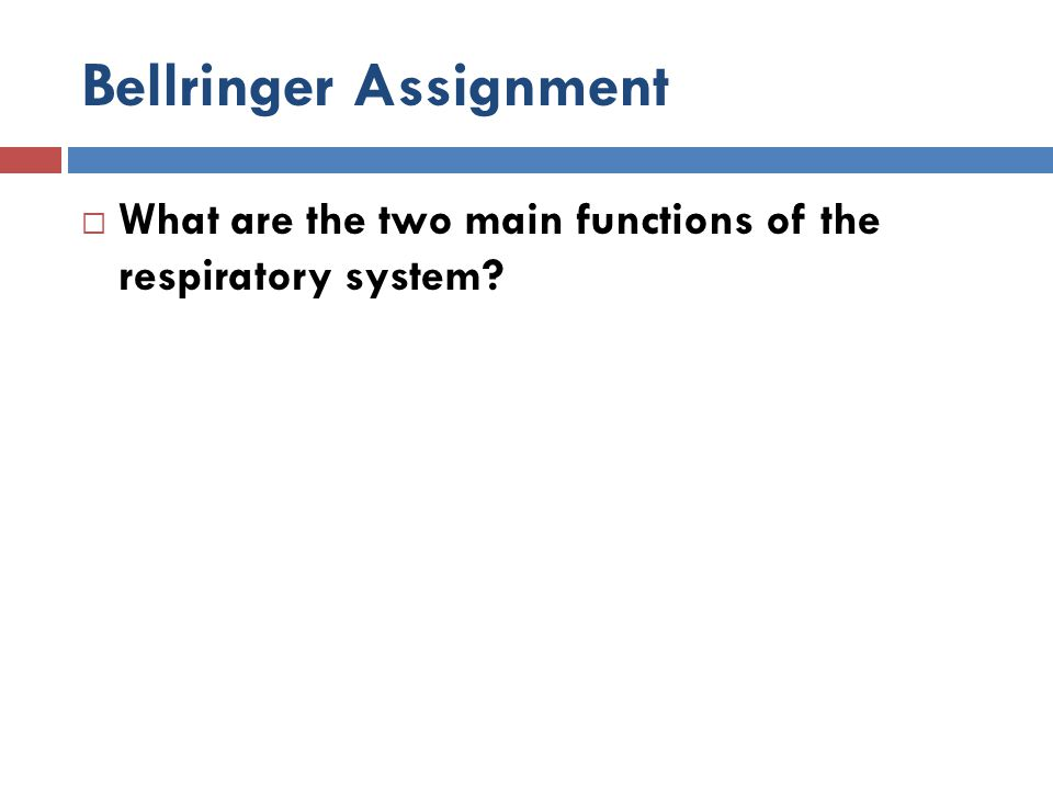 Bellringer Assignment  What are the two main functions of the respiratory system?