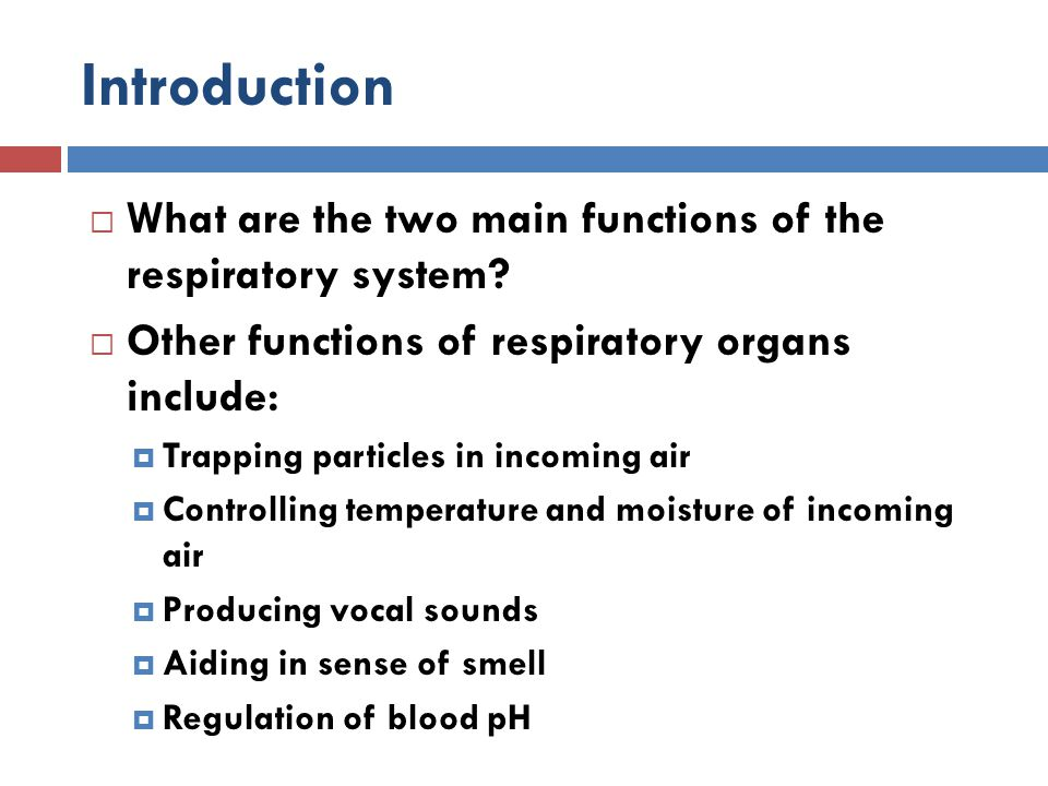 Gas Transport  Oxygen transport:  Almost all oxygen (98%) is transported in combination with hemoglobin.