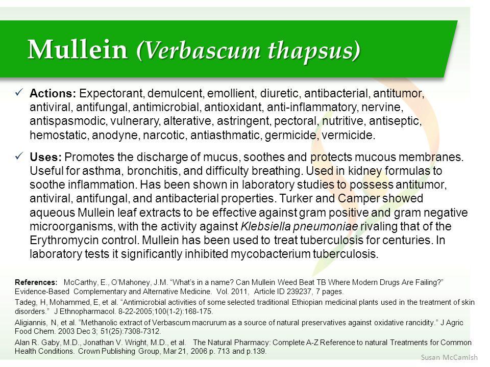 Actions: Expectorant, demulcent, emollient, diuretic, antibacterial, antitumor, antiviral, antifungal, antimicrobial, antioxidant, anti-inflammatory,