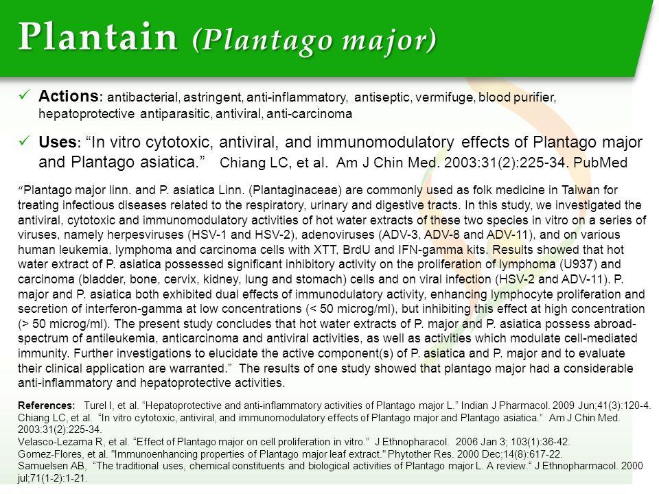 "Plantain (Plantago major) References: Turel I, et al. ""Hepatoprotective and anti-inflammatory activities of Plantago major L."" Indian J Pharmacol. 200"