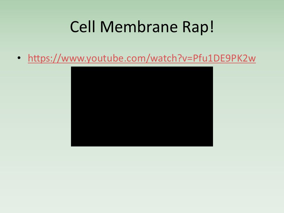 Cell Membrane Rap! https://www.youtube.com/watch v=Pfu1DE9PK2w