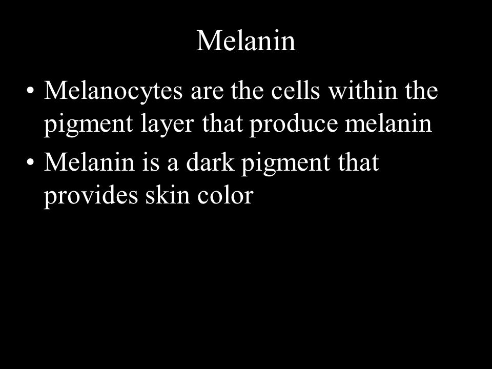 Melanin Melanocytes are the cells within the pigment layer that produce melanin Melanin is a dark pigment that provides skin color