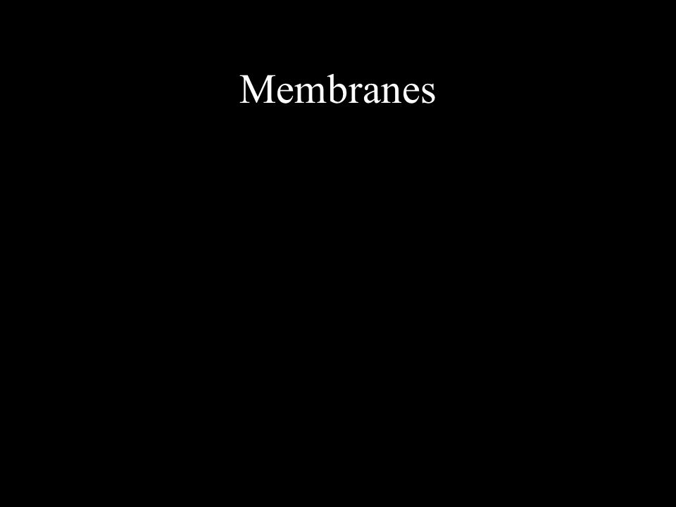 A membrane is a thin, sheetlike structure with many important functions in the body Membranes cover and protect the body surface, line body cavities, and cover the inner surfaces of the hollow organs.