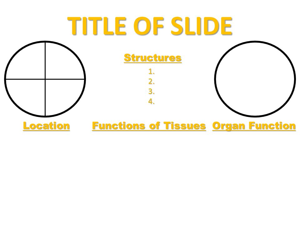 TITLE OF SLIDE Structures 1. 1. 2. 2. 3. 3. 4. 4. Location Functions of Tissues Organ Function