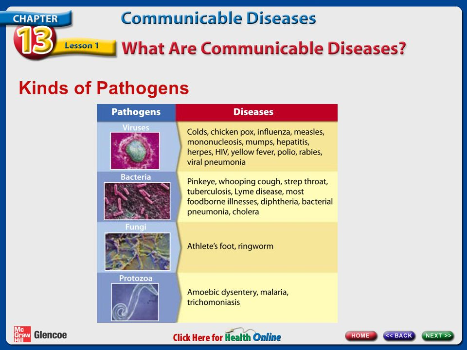 Kinds of Pathogens