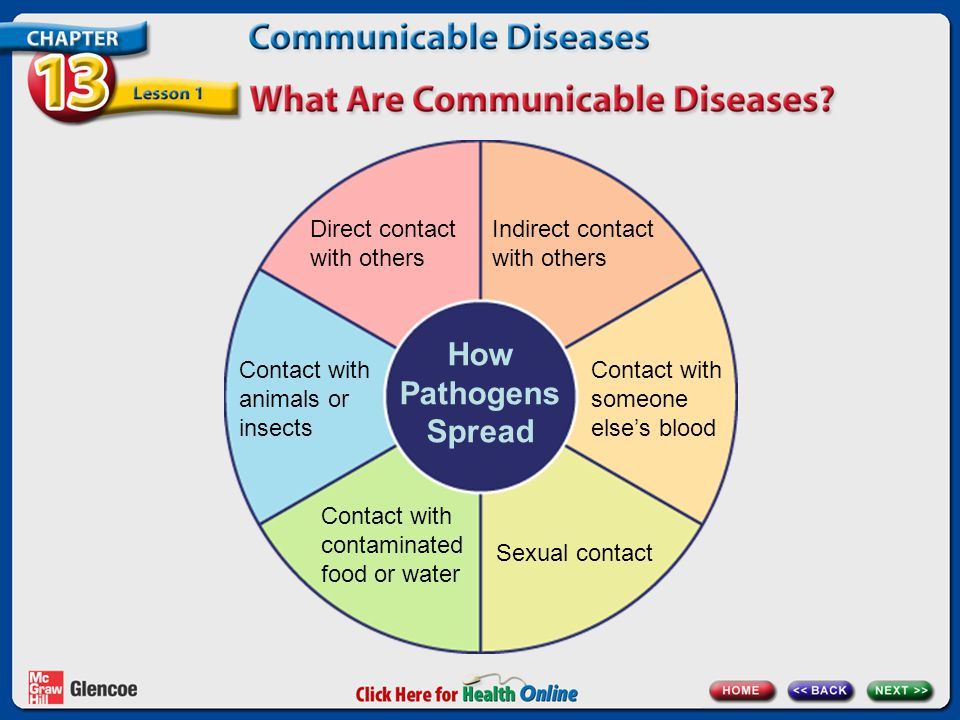 How Pathogens Spread Direct contact with others Indirect contact with others Contact with someone else's blood Sexual contact Contact with contaminate