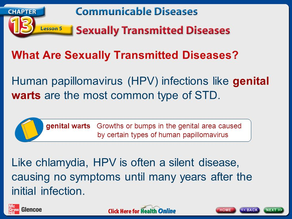 What Are Sexually Transmitted Diseases? Human papillomavirus (HPV) infections like genital warts are the most common type of STD. genital warts Growth