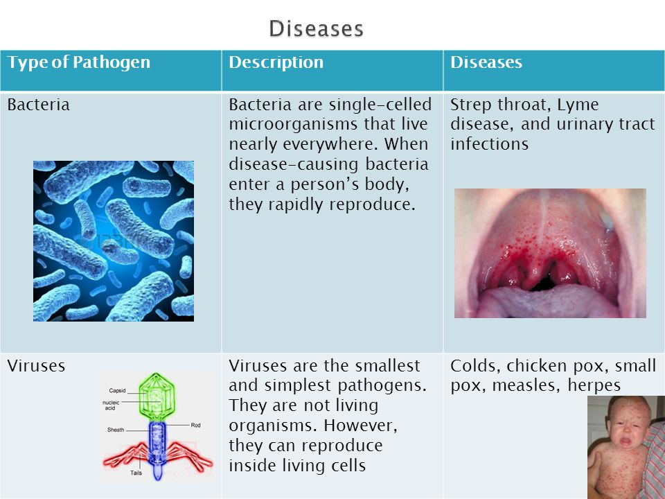Type of PathogenDescriptionDiseases BacteriaBacteria are single-celled microorganisms that live nearly everywhere. When disease-causing bacteria enter